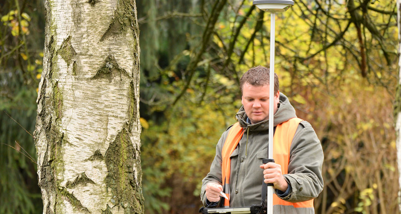 Sustainably maintain and protect trees using GIS
