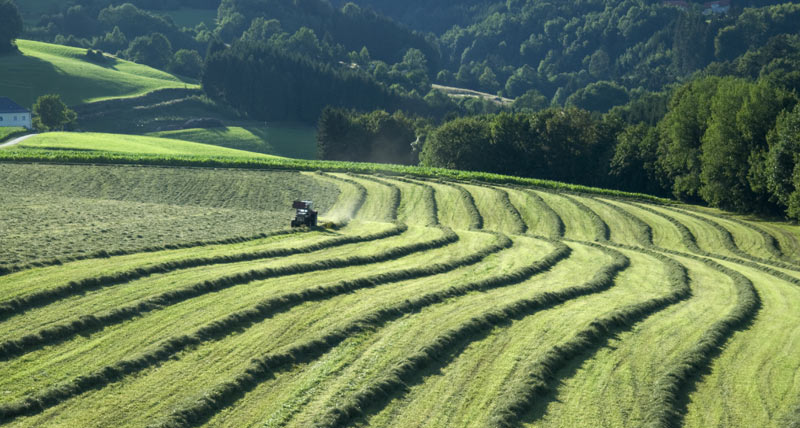 Innovative Solutions - Agriculture